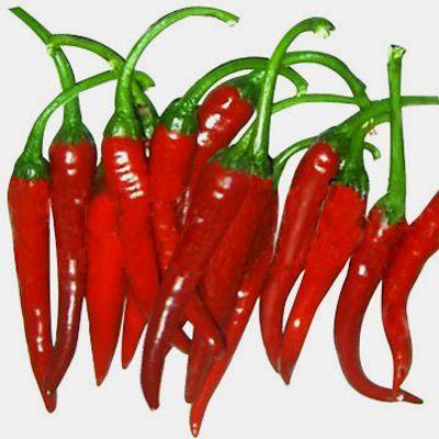 pimenta-malagueta